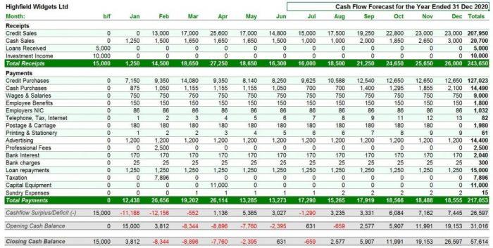 Sam's cash flow template